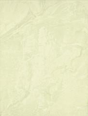 Yasmina verde P1 obklad 25x33,3
