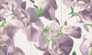 Colour bloom violet inzerto 3prvky 59,3x98,1