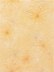 WITKB147 Delta oranžová dekor 25x33x0,7