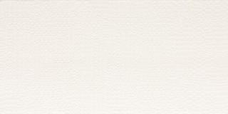 WADMB090 Trinity bílá obkládačka 19,8x39,8x0,7
