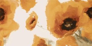 Inserto giallo maki A 30x60