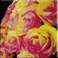 Inserto szklane kwiaty 20x20