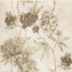 Inspiration beige panel 30x60x2