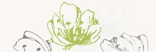 Midian verde inserto kwiat 20x60