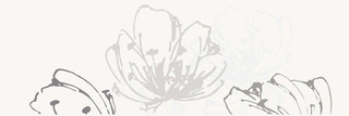 Midian bianco inserto kwiat 20x60