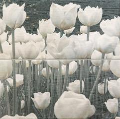 Dekor 2-elementowy Sabaudia flower 44,8x44,8