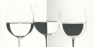 Vivida bianco inserto vine 30x60