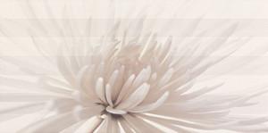 Avangarde inserto flower 29,7x60