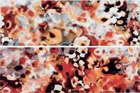 WITVE004 Air červeno-oranžová dekor 19,8x59,8x1