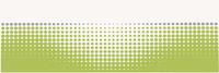 Midian verde inserto punto 20x60