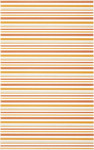 Diantus orange inserto stripe 25x40